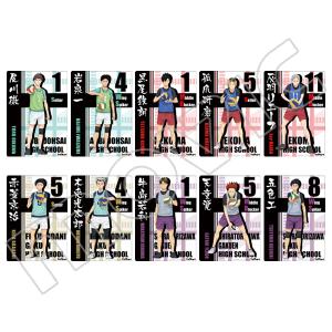 ハイキュー!! 烏野高校 VS 白鳥沢学園高校 ミニクリアポスターコレクション ライバル校