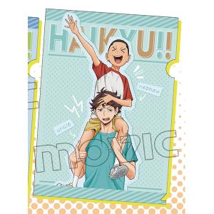 ハイキュー!! 烏野高校 VS 白鳥沢学園高校 クリアファイル 血縁シリーズ(及川)