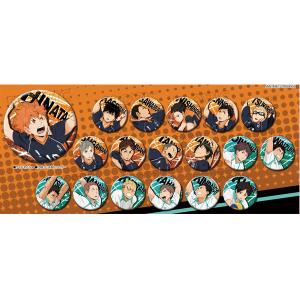 ハイキュー!!烏野高校 VS 白鳥沢学園高校 缶バッジコレクション