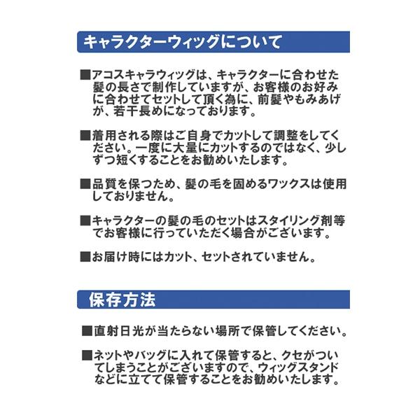 鬼滅の刃 キャラクターウィッグ 冨岡義勇