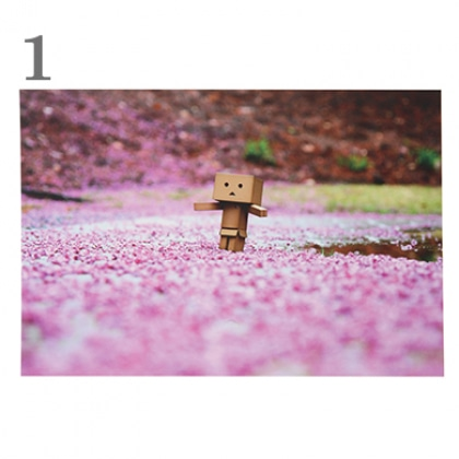 【ポストカード】365 Days of Danboard/No.001