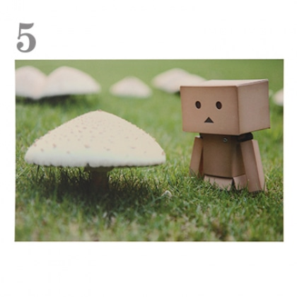 【ポストカード】365 Days of Danboard/No.005