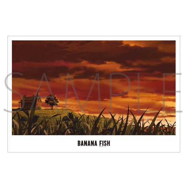 「BANANA FISH」放送記念原画展覧会 美術ポストカード16